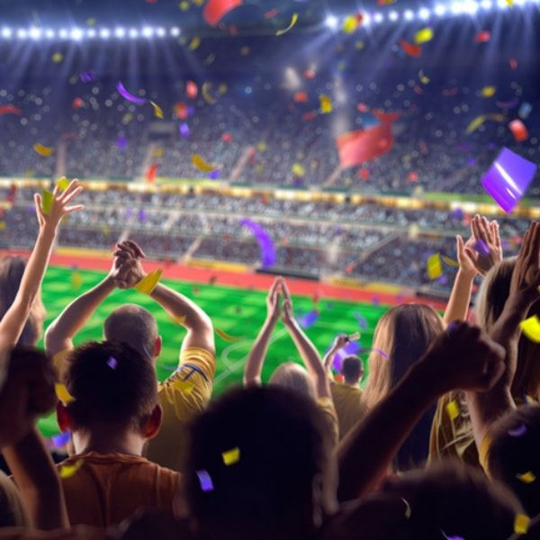 Football Is Coming Home | Hermes House Band Dj Ötzi Karaoke Playback Songs kaufen & download starten